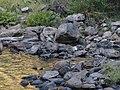 Grandes Rios - State of Paraná, Brazil - panoramio (2).jpg