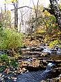 Grant's Creek (Tay River) at Allan's Mill, October, 2009 (5021220242).jpg