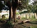 Graveyard, St Mary the Virgin, Higher Brixham - geograph.org.uk - 366658.jpg