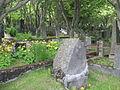 Graveyard in Reykjavik.jpg