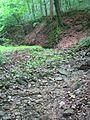 Großer Steingraben 11.jpg