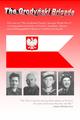 Grodynski Brigade Image 02.png