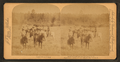 Group of cowboys, New Mexico, U.S.A, by Jarvis, J. F. (John F.), b. 1850.png