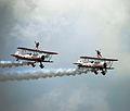 Guinot wing walkers (3668976824).jpg