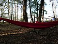 Hammock after protest in the Hambach forest 01.jpg