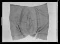 Handhästtäcke, troligen använt vid ambassadören Nils Bielkes intåg i Paris 1679 - Livrustkammaren - 53328.tif