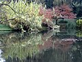 Hangzhou West Lake 杭州西湖边 (8638472046).jpg