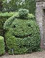 Happy Box Hedge (4919615689).jpg