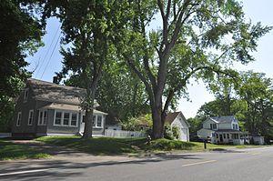 Elm Street Historic District (Hatfield, Massachusetts) - Bungalow-style houses on Elm Street