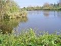 Havelkanal bei Wustermark - geo.hlipp.de - 43253.jpg