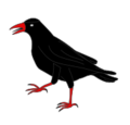 Heraldic Cornish chough.png