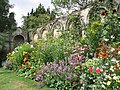 Herbaceous Border, Dewstow Gardens - geograph.org.uk - 656364.jpg