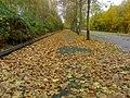 Herne im November 2009, das Laub fällt und bleibt - panoramio.jpg