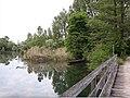 Herrenkopfbrücke, Rhinau.jpg