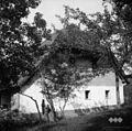 Hiša s konca, Velike Češnjice 1950.jpg