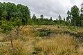 Hiking trail Upplandsleden, Sweden 09.jpg