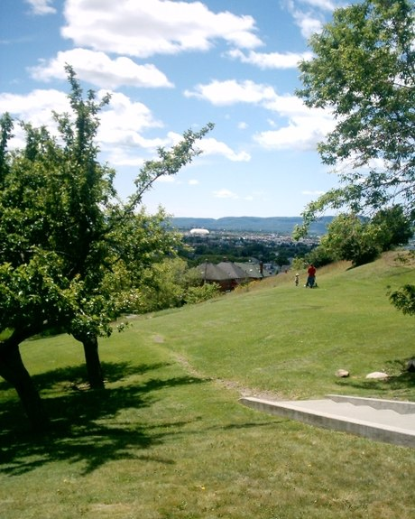 Hillcrest Park, looking south to Fort William Hillcrest Park View Of Fort William date-2006 06 22.JPG