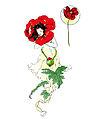 Hills Poppy-from-Flower-Folk-1890.jpg
