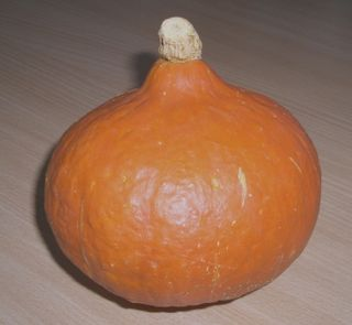 Red kuri squash Type of winter squash
