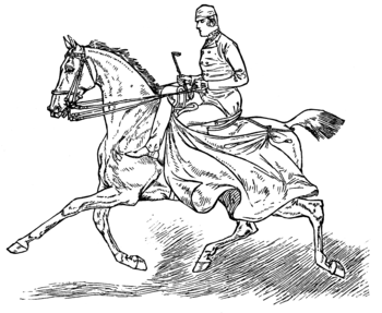 English: Image from book Horsemanship for Wome...