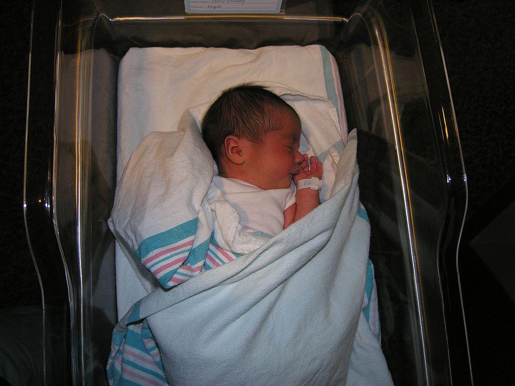File:Hospital Newborn By Bonnie Gruenberg5.jpg