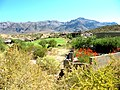Houses in the Superstition Foothills - panoramio.jpg