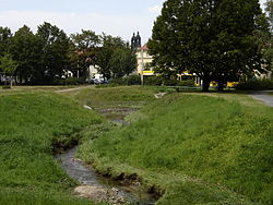 HugoBuerknerPark2.jpg