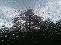 Hujan di Langit Tapanuli.jpg
