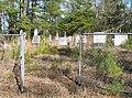 Hutchins Cemetery (97284082).jpg