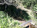 Iguape - SP - panoramio (281).jpg