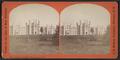 Inebriate Asylum, Binghamton, N.Y, by Walker, L. E., 1826-1916.png