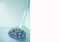 Installation de couleur exacte du caviar de Kaspia.jpg