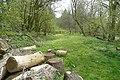 Into Rag Wood - geograph.org.uk - 801644.jpg