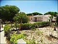 Isla de Armona (Portugal) (49673470243).jpg