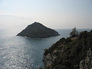 Bergeggi (island) - Bergeggi from Punta Predani