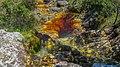 Itabira - State of Minas Gerais, Brazil - panoramio (107).jpg