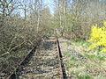 Itzehoe Bahntrasse-Itzehoe-Wrist April-2009 SL270523.JPG