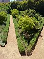 Iziko rust en vreugd gardens 12.jpg