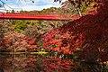 Izumi Nature Park - Flickr - t.kunikuni.jpg