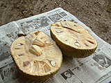 English: An opened Jack Fruit or Artocarpus he...