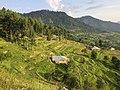 Jan Baik, Allai Valley, Battagram, KPK, Pakistan.jpg