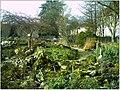 January Frost Botanic Garden Freiburg - Master Botany Photography 2014 - panoramio (26).jpg