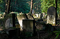 Jewish cemetery Otwock Karczew Anielin IMGP6800.jpg