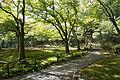 Jingoji Kyoto Kyoto32n4592.jpg