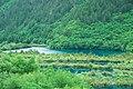 Jiuzhaigou, Aba, Sichuan, China - panoramio (80).jpg