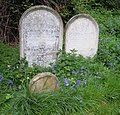 John Prior and James Light Rosary Cemetery Norwich.jpg