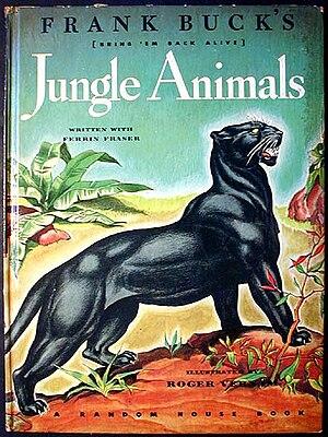 Jungle Animals cover