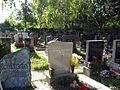 Kagraner Friedhof.jpg