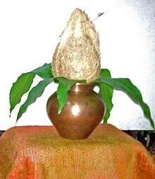 Image result for free image of navratri kalash