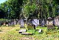 Kamienna Góra, cmentarz żydowskiPICT6699.JPG